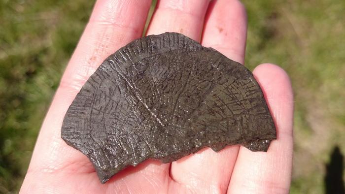 На балтийском острове нашли «солнечные камни» с новым орнаментом