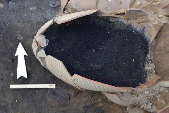 Раскопки в Танаисе: мраморное ядро и «победный» стакан