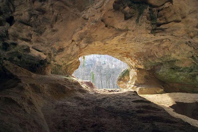 Пещера Виндия в Хорватии – один из главных «источников» неандертальской ДНК. (Фото: Tomislav Kranjcic / Wikimedia.)