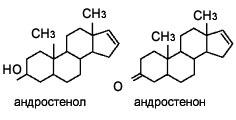 На роль человеческих феромонов претендуют некоторые производные стероидных гормонов. Например, андростенол и андростенон , которые могут образовываться из мужского полового гормона тестостерона.