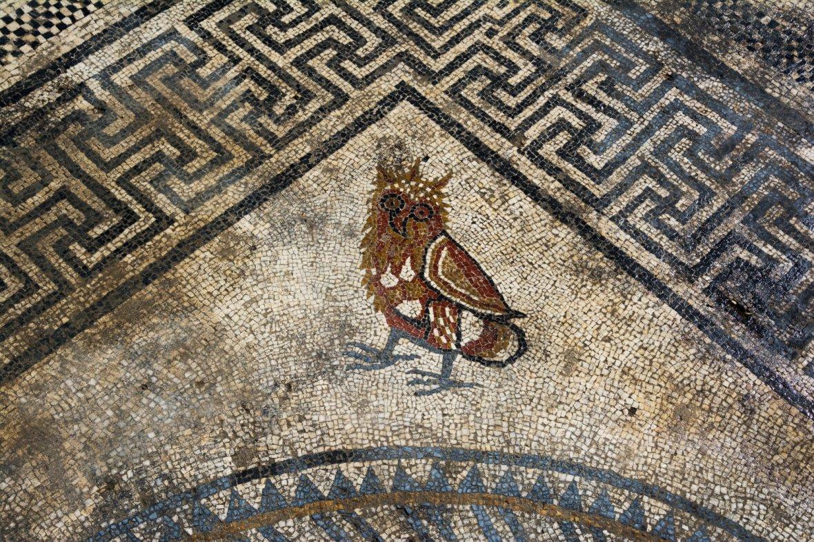 Наюге Франции найдены античные мозаики