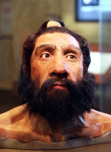 Реконструкция внешнего вида неандертальца. Национальный музей естественной истории в Вашингтоне. (Фото: Tim Evanson / Flickr.com.)