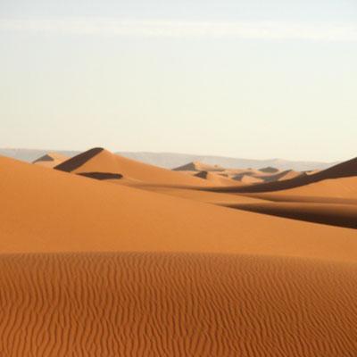 Кто превратил Сахару в пустыню?