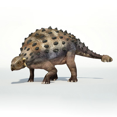 Почему некоторых динозавров находят кверху брюхом
