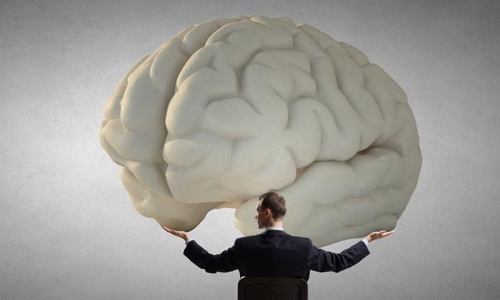 Картинки по запросу Уровень интеллекта не зависит от размеров мозга