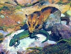 Появились и первые млекопитающие.