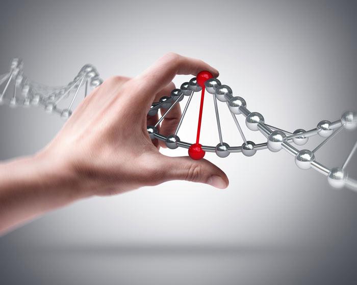 Человеческие гены оказалось сложно исправлять   Наука и жизнь