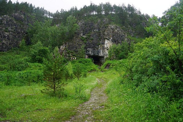 ВДенисовой пещере отыскали старинный гибрид зебры иосла