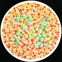 С помощью этого рисунка можно проверить своё цветовое зрение. Люди с нормальным зрением видят в кружке число 74, дальтоники — число 21.
