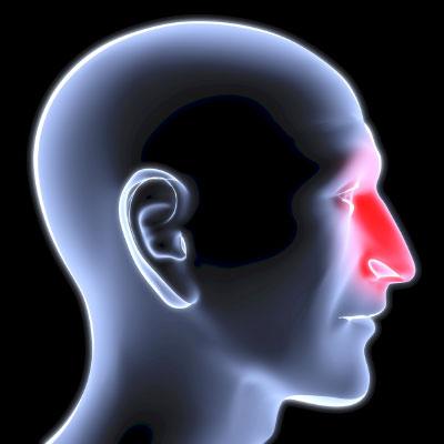 Капилляры лица реагируют на движения тела