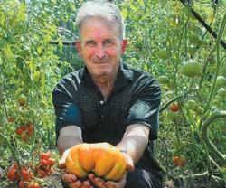 Ю. Ушаков со своим самым крупноплодным сортом Машенька. Вес плода - около 800 г.