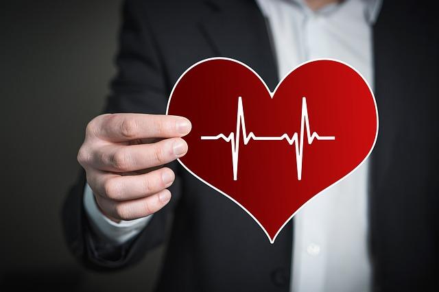 Почему женское сердце крепче мужского | Наука и жизнь