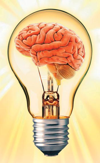Орган человека потребляющий энергию