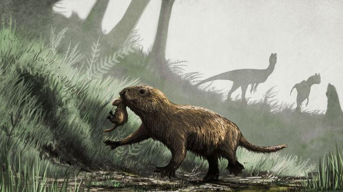 Первые млекопитающие, заставшие динозавров, еще откладывали яйца и были похожи на современных утконосов и ехидн. (Иллюстрация: Mark Witton.)
