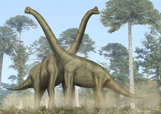 Почему у гигантских динозавров не ломался позвоночник | Наука и жизнь