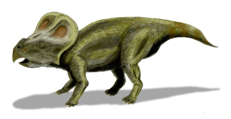 Динозавры выводились из яиц очень долго | Наука и жизнь