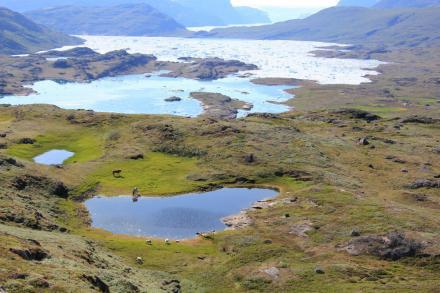 Гренландский пейзаж. Фото: C. K. Madsen / ScienceNordic / sciencenordic.com.