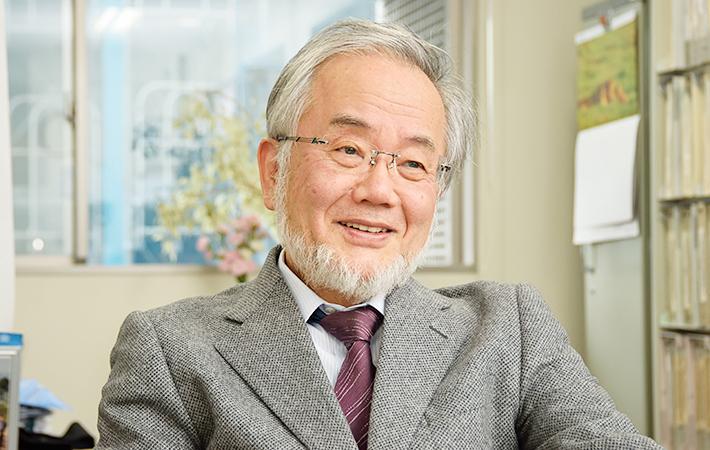 Нобелевскую премию по медицине дали за механизм клеточного самопоедания