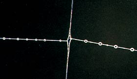 Клейкое вещество, покрывающее нить ловчей спирали, равномерно распределяется по паутине в виде капелек-бусинок. На снимке показано место присоединения двух фрагментов ловчей спирали к радиусу.