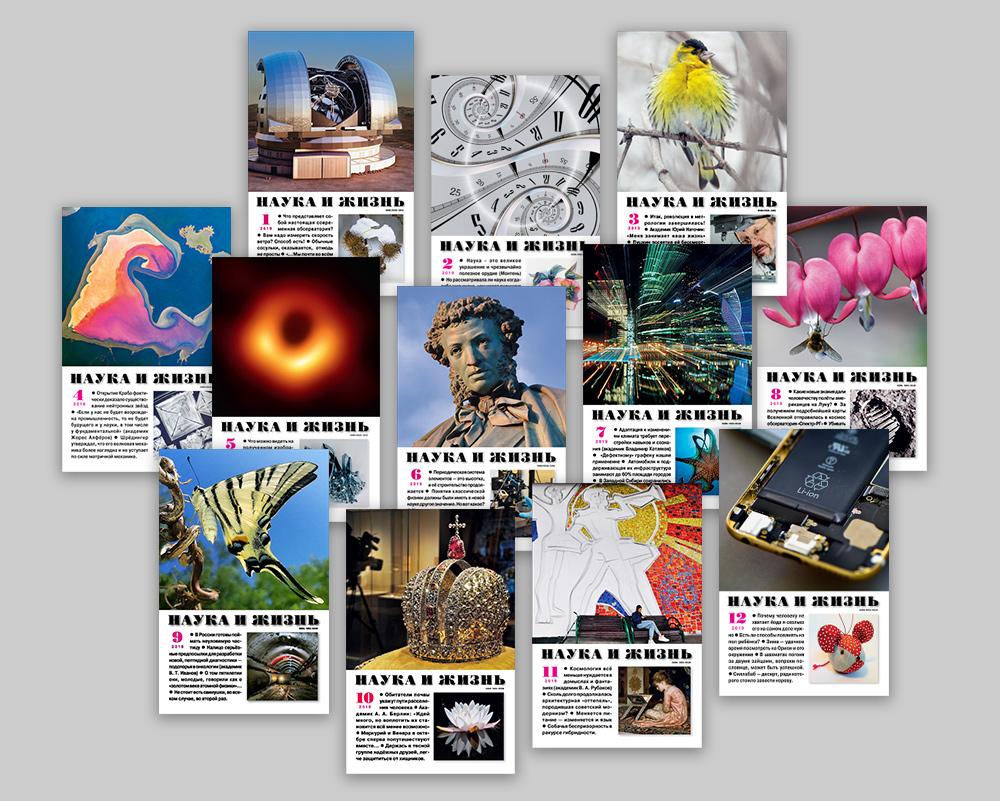 Обложки журналов «Наука и жизнь» за 2019 год